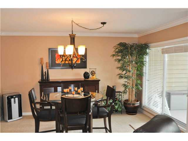 # 406 1050 BOWRON CT - Roche Point Apartment/Condo for sale, 2 Bedrooms (V868038) #4